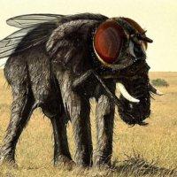 Как перестать делать из мухи слона!