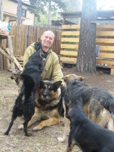 """На фото: волонтер в приюте для бездомных животных """"Собачий Ангел"""""""