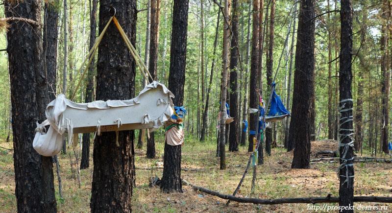 Детские люльки в лесу