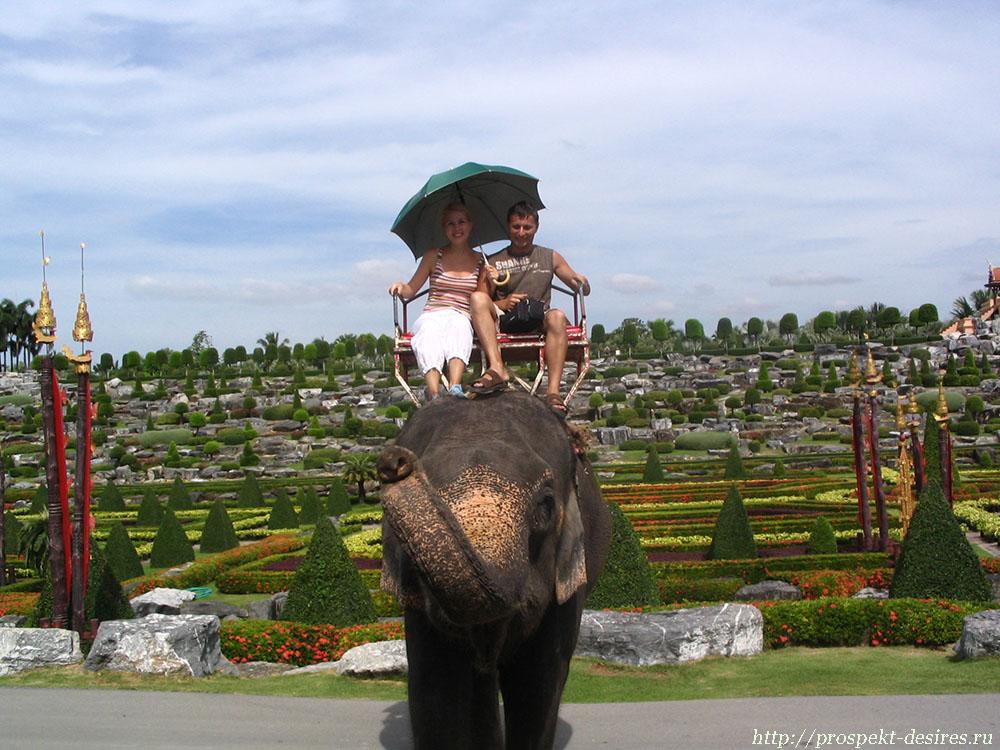 Катание на слоне в Нонг Нуч