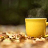 Осенняя депрессия: как избавиться и прогнать осеннюю грусть!