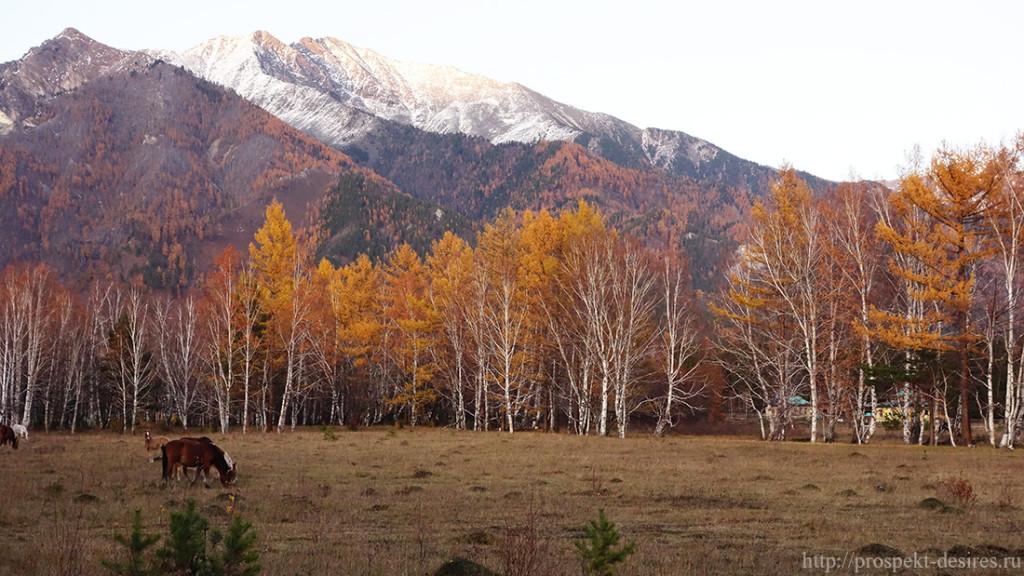 Осень в Аршане