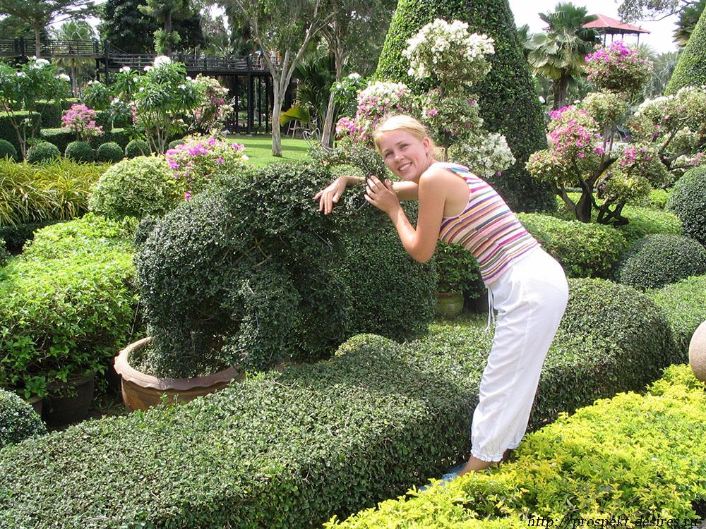 Фигурки животных в Нонг Нуч
