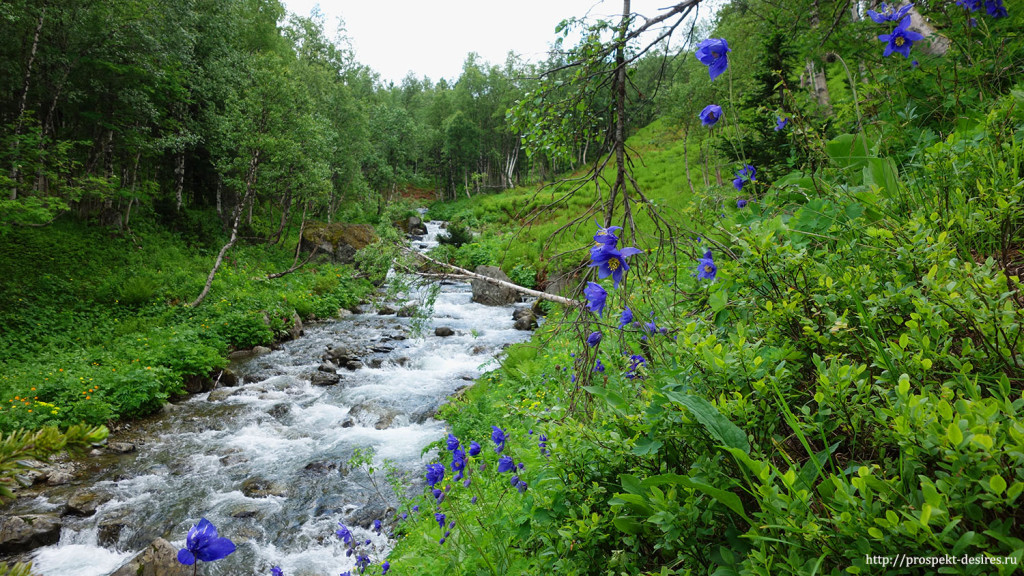 Дорога к Ивановским озерам