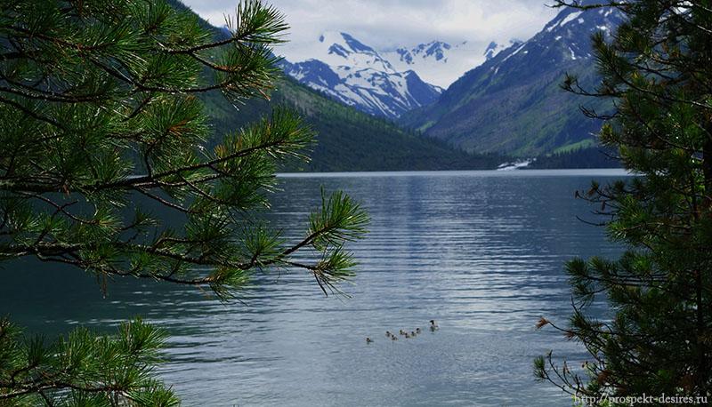 мультинские озера алтай
