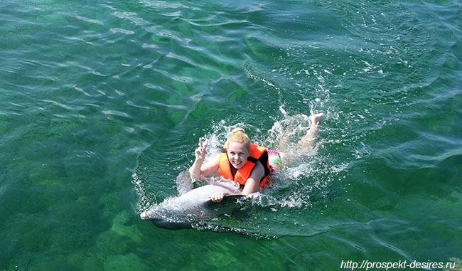 катание на дельфине в варадеро