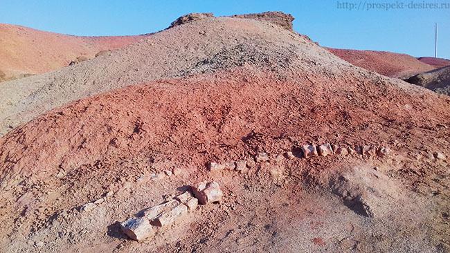 кости динозавра в пустыне Гоби