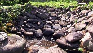 телецкое озеро артыбаш отдых