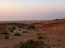 что делать в пустыне гоби