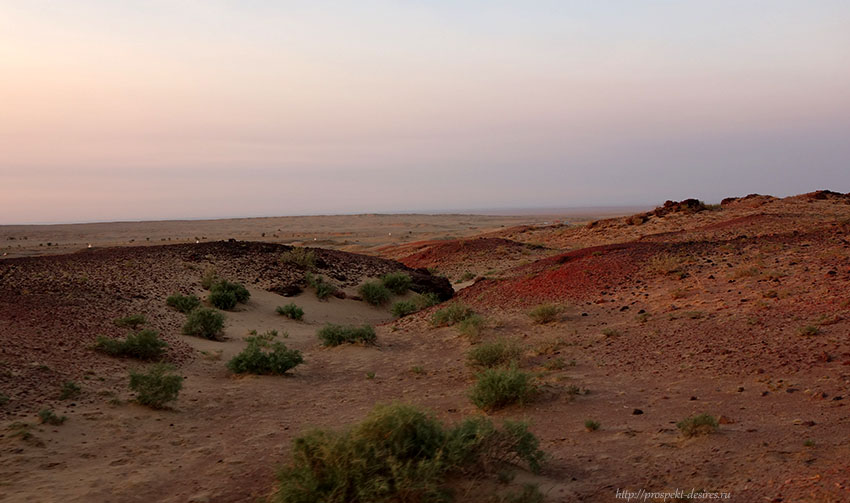 что сделать в пустыне гоби
