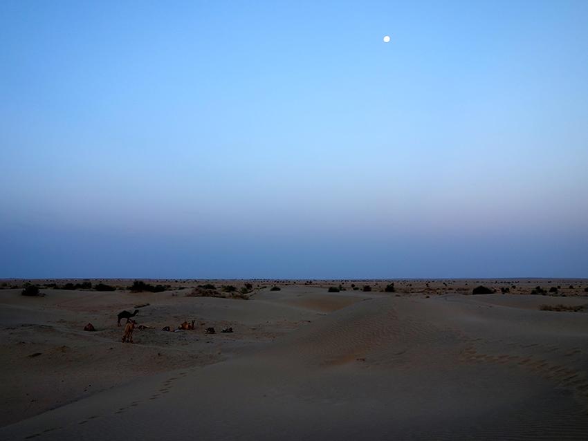 ночь в пустыне Тар Индия
