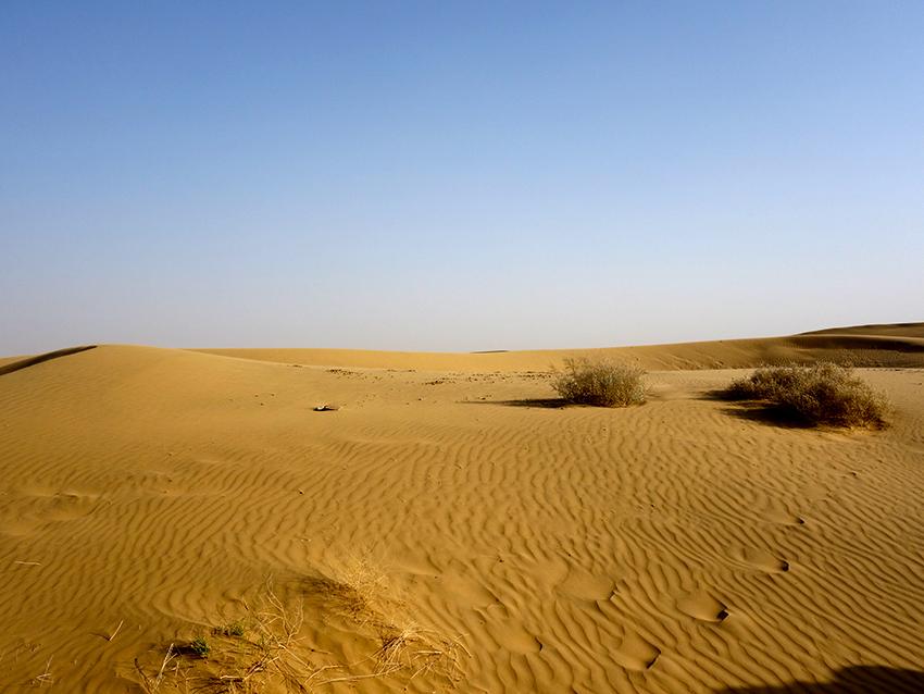 Индийская пустыня Тар